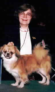 We finished three Tibetan Spaniel Champions in 1999!Click HERE for more about 'TY-GUY'